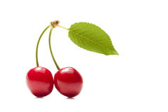 Two delicious red cherries and green leaves. Stock Photos