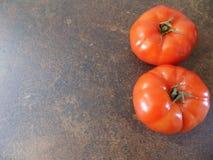Two delicious tomatos stock photos