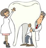 Two dentists holding up a giant tooth Royalty Free Stock Photos