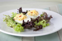 Two Deviled Eggs Royalty Free Stock Photography
