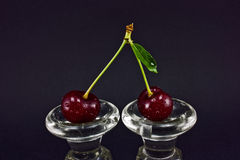 Two dewy cherry Royalty Free Stock Photography