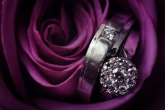 Two diamond wedding rings that belongs to bride and groom with purple rose. stock image