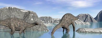 Two dicraeosaurus dinosaur Royalty Free Stock Photo