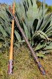 Two Didgeridoos Stock Photos