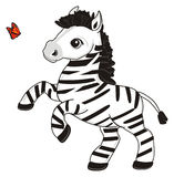 Two different animals. Little zebra stand and orange butterfly fly around Stock Images