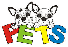 Two different  bulldog puppy and a sign pets Stock Image