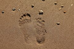 Two different footprints on sand Stock Images