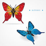 Two different multicolored butterflies on white ba Royalty Free Stock Photo