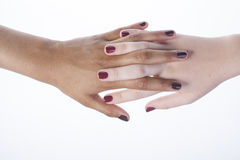 Two different nathion manicured hands on white Stock Images