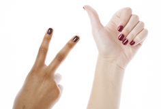 Two different nathion manicured hands on white Stock Photography