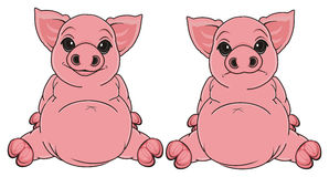 Two different pigs sits Royalty Free Stock Photography