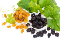 Two different raisins Stock Image