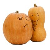 Two different sorts of pumpkin. On white background Stock Images