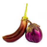 Two different species of eggplant Royalty Free Stock Photo