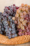Two different types of grapes on tray Stock Images