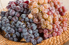 Two different types of grapes on tray Royalty Free Stock Photos