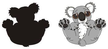 Two differents koala Stock Photos