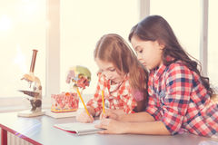Two diligent girls drawing model of skull. Work together. Very attentive pupils holding pencils and notebook while doing their task, standing at their workplace stock photo