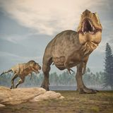 Two dinosaurs - tyrannosaurus rex. Royalty Free Stock Photo