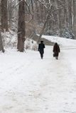 Two Distant People Walking in Snowy Park. Royalty Free Stock Photos