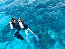 Two divers in black scuba diving suits, a man and a woman with oxygen bottles sink under the transparent blue water in the sea, th. E ocean in a tropical Royalty Free Stock Photos