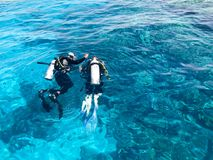 Two divers in black scuba diving suits, a man and a woman with oxygen bottles sink under the transparent blue water in the sea, th royalty free stock photos