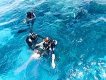 Two divers in black scuba diving suits, a man and a woman with oxygen bottles sink under the transparent blue water in the sea, th royalty free stock image