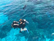 Two divers in black scuba diving suits, a man and a woman with oxygen bottles sink under the transparent blue water in the sea, th stock photography