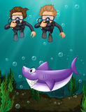 Two divers looking at shark underwater Stock Image