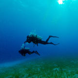Two Divers near Sea Bottom Royalty Free Stock Images