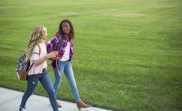 Two diverse school kids walking and talking together on the way to school. Back to school photo of diverse girls wearing backpacks in the school yard Royalty Free Stock Image