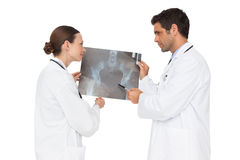 Two doctors analysing an xray together Stock Photos