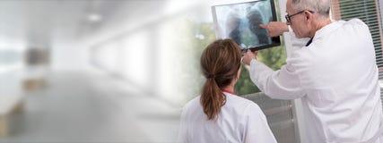 Two doctors examining x-ray report Stock Photos