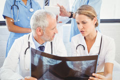 Two doctors examining an x-ray report Royalty Free Stock Photos
