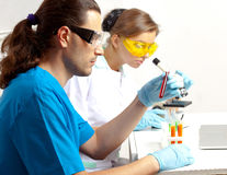 Two doctors in the lab Royalty Free Stock Photography