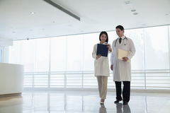 Two doctors standing and looking down at a document in the hospital, full length Royalty Free Stock Images