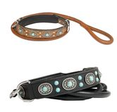 Two dog collar Royalty Free Stock Photo