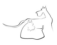 Two dogs. Outlines of two dogs. The picture is isolated on a white background Royalty Free Stock Photo