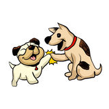 Two dogs greeting Stock Image
