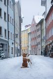 Two dogs hug each other and look at the street of a small town. Pet in the city, walk, trip royalty free stock image