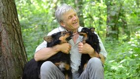 Two dogs lick master in the forest, HD 1080. Dogs lick master elderly man with gray hair in the forest, HD 1080 stock footage