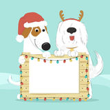 Two dogs in Santa hat and reindeer horns holding a wooden surface. Two dogs in Santa hat and reindeer horns on a blue background holding a wooden surface with Stock Photo