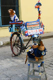 Two dogs on the street of Old Havana Stock Photo