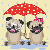 Two Dogs with umbrella. Greeting card two Dogs with umbrella Stock Images