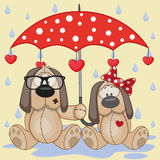 Two Dogs with umbrella. Greeting card two Dogs with umbrella Royalty Free Stock Image