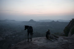 Two dogs watching the sunrise. Hampi, India. Two dogs watching the sunrise from the top of a mountain in the archaeological complex of temples and ruins of Hampi royalty free stock photo