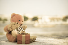 Two dolls Royalty Free Stock Photography