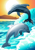 Two dolphin swimming at a beach at sunrise Royalty Free Stock Photos