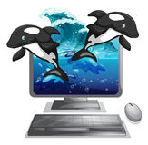 Two dolphines jumping out of computer screen Stock Images