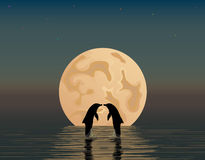 Two dolphins with anchor and star. Two dolphins in the sea on the background of the moon Royalty Free Stock Photography